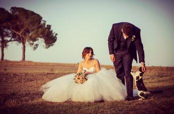 Non sarà un'avventura, questo amore è fatto solo di poesia: le nozze di Elisa e Claudio
