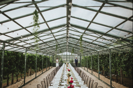 Matrimonio in serra per un evento a tutto green!