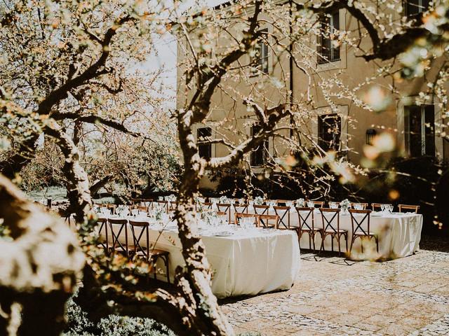 Menù di nozze primaverile: tips per portare in tavola il meglio della stagione