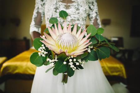 Decorazioni floreali originali con la Protea, il fiore del coraggio