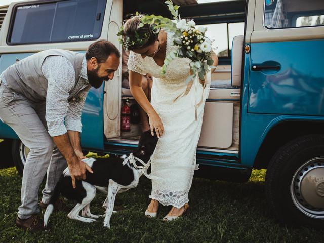 Wedding Dog Sitter: un professionista per i nostri amici animali