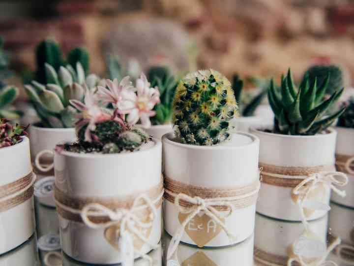 Idee Bomboniere Matrimonio 2018.Bomboniere Matrimonio Originali Ecco Le 30 Idee Che Non
