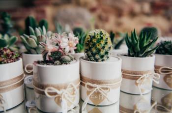 Bomboniere matrimonio originali: ecco le 30 idee che non passeranno inosservate!
