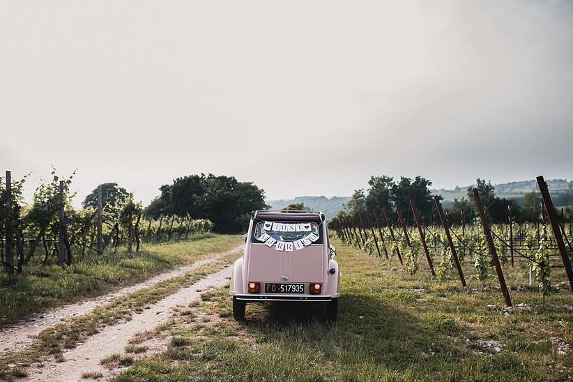 Alice Ongaro Wedding Stories
