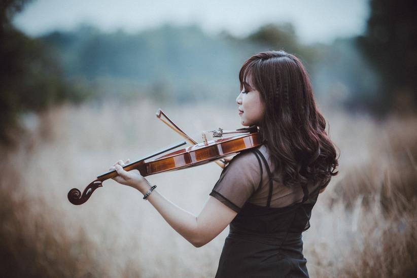 Violinista Bologna