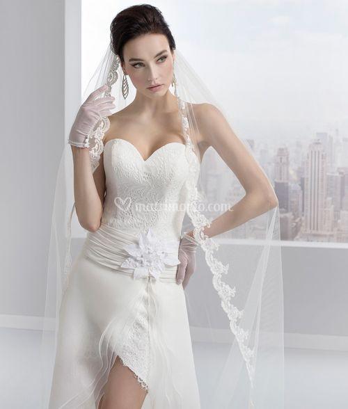 217064, Toi Spose