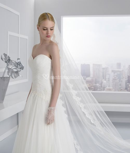 217068, Toi Spose