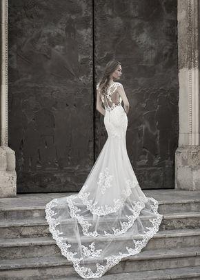 S36S81, Le Spose Di Sofia