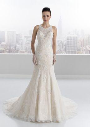 C17002A, Toi Spose