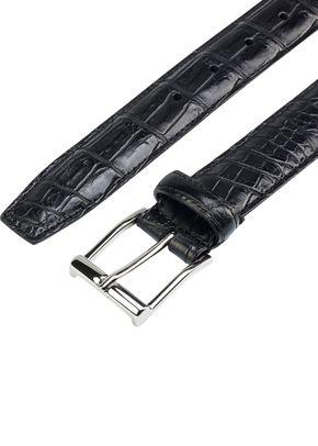 Black Crocodile, 540