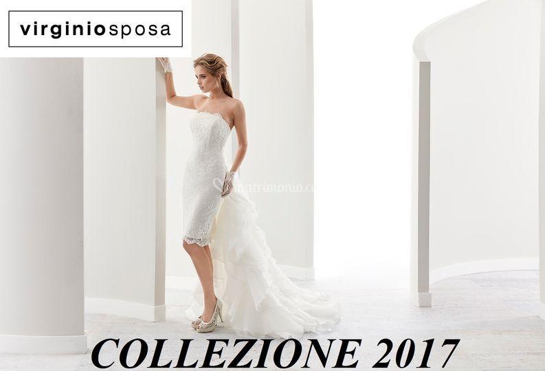 Nicole 2017 coll. Jolie 17482 di Virginio Sposa