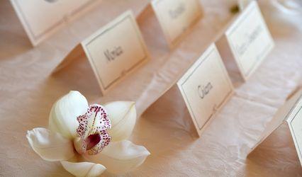 Paola Casetta Wedding Planner 2