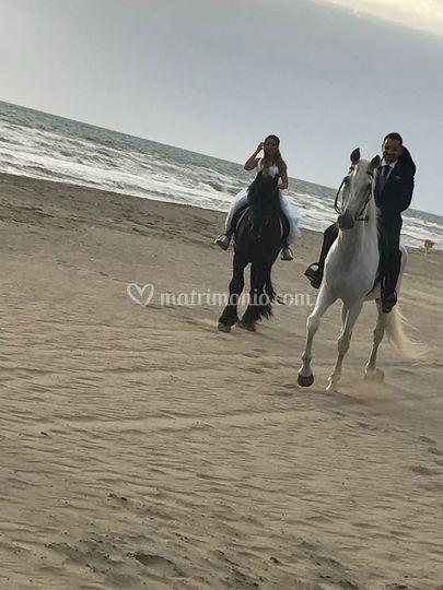 Arrivo degli Sposi a Cavallo