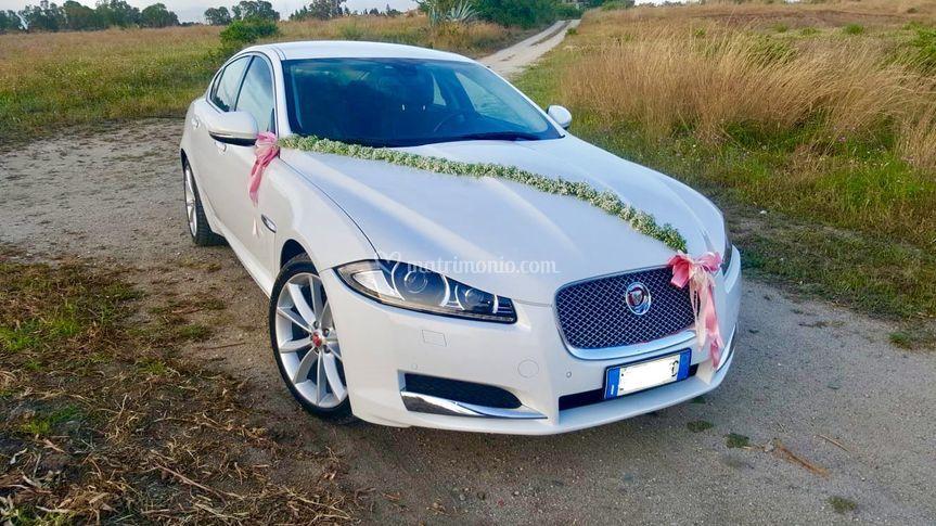 Jaguar xf bianca