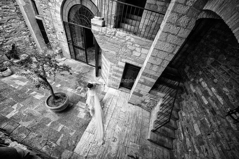 Flavio Carnevale Photographer