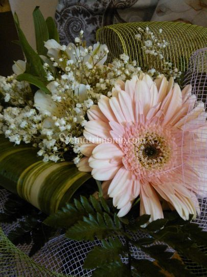 Bouquet di gerbere e astromer