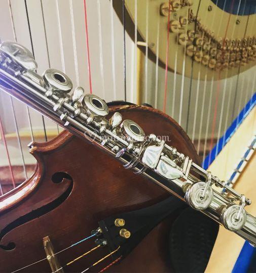 Arpa, flauto e violino