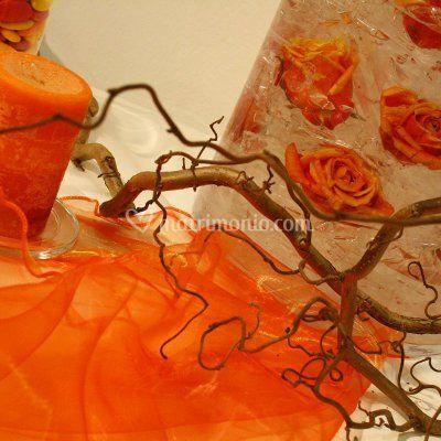 Chicchi d'arancio