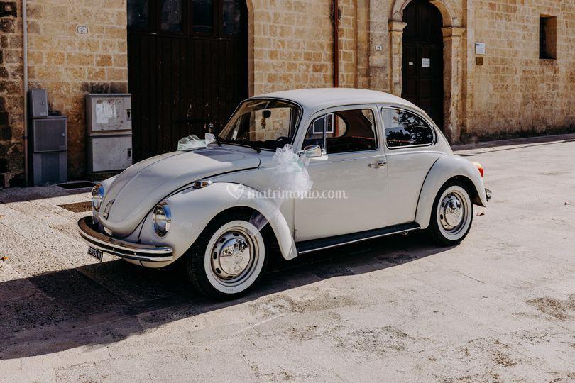 Beetle in love