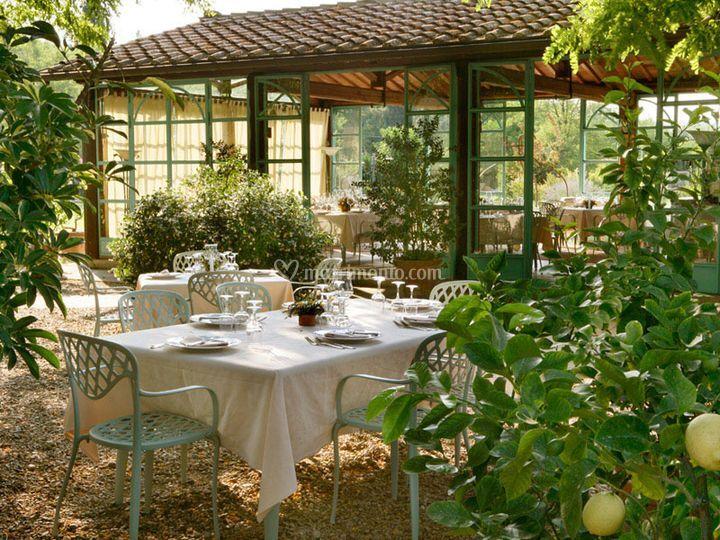 Matrimonio Limonaia Toscana : Limonaia di ristorante gourmet casa masi foto