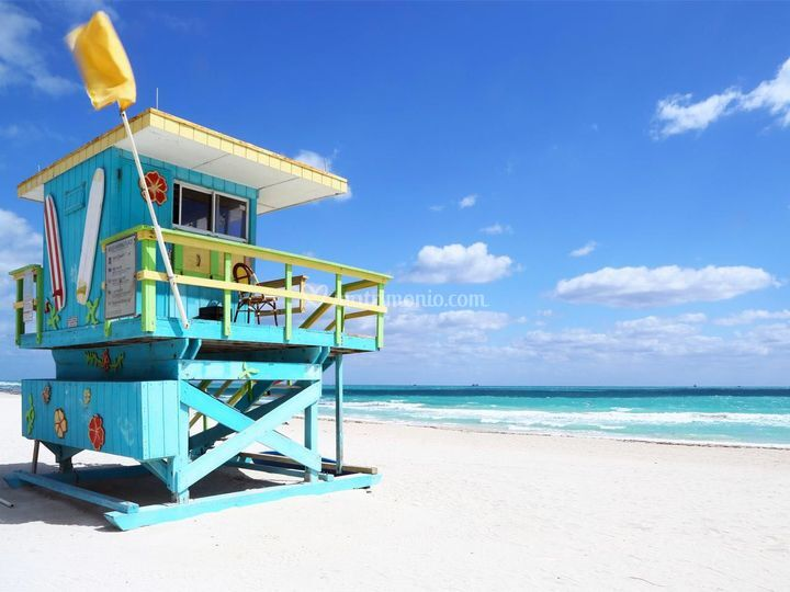 Miami di Zelig Viaggi