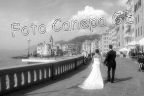 Fotocanepa Stefano