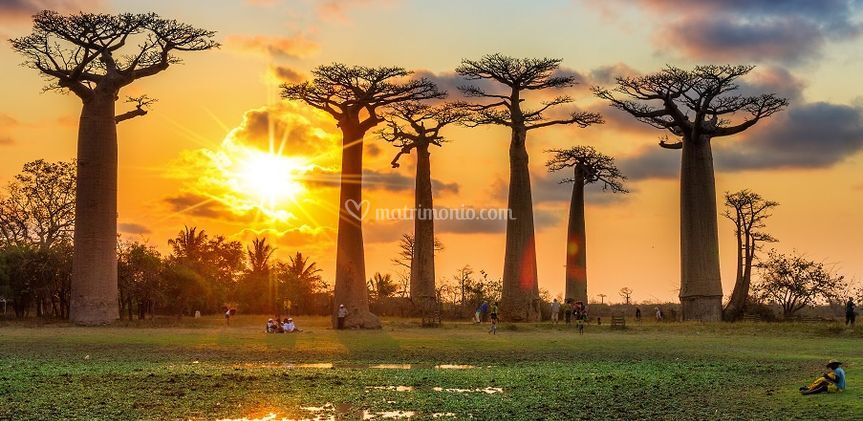 Madagascar - Veloma Viaggi