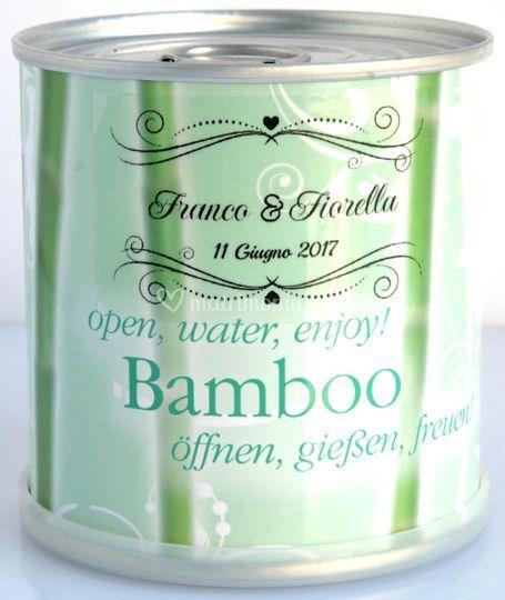 Bomboniera Bamboo