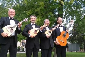 Mandolin Quartet