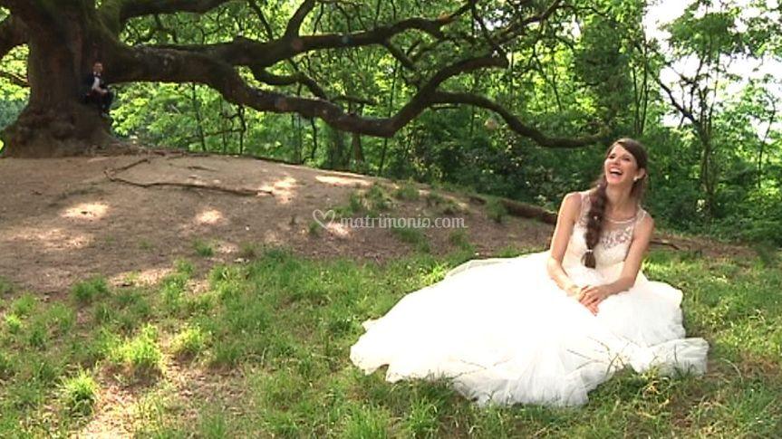 La Sposa e la grande quercia