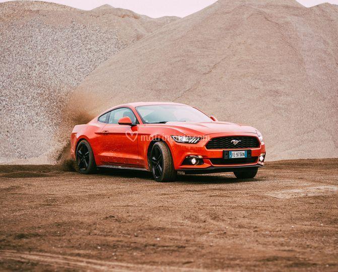 American Wild Wheels Cars