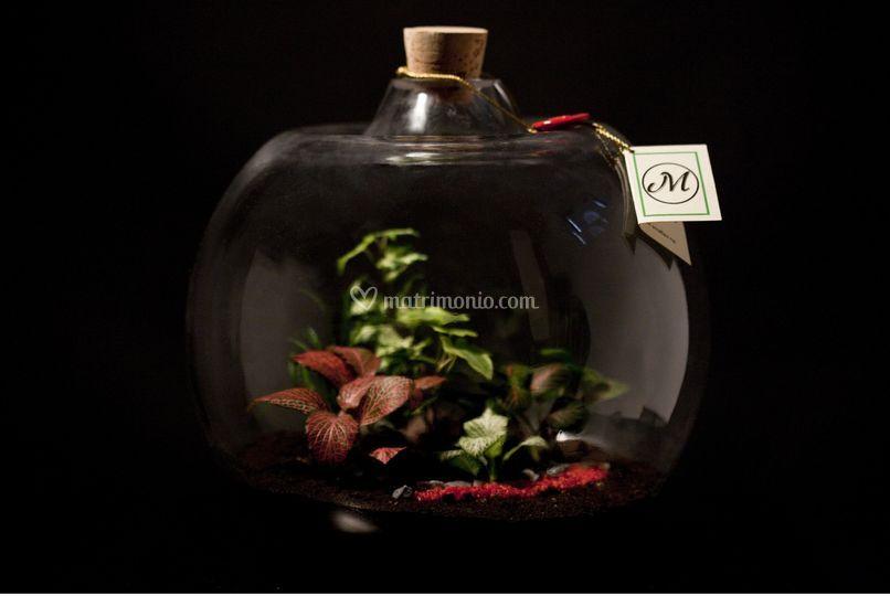 Esempio natura in boccia di vetro