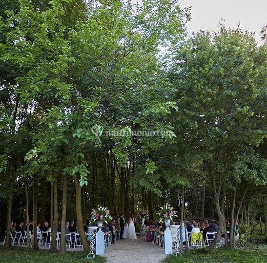 Cerimonia nel boschetto