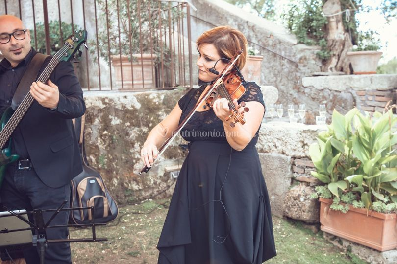 Violinista White Band Lady