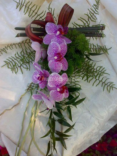 Bouquet  phalenopsis