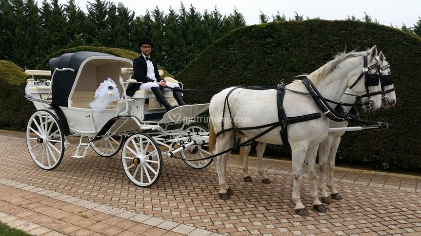 Matrimonio in carrozza conversano for Come costruire una carrozza