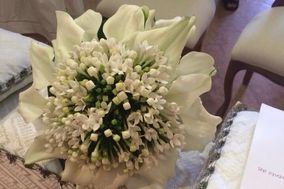 Barbara Montresor floreal design