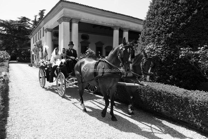 Carrozza De Rosa & Company