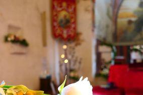 Fioreria Cavour di Moret Rita Anna