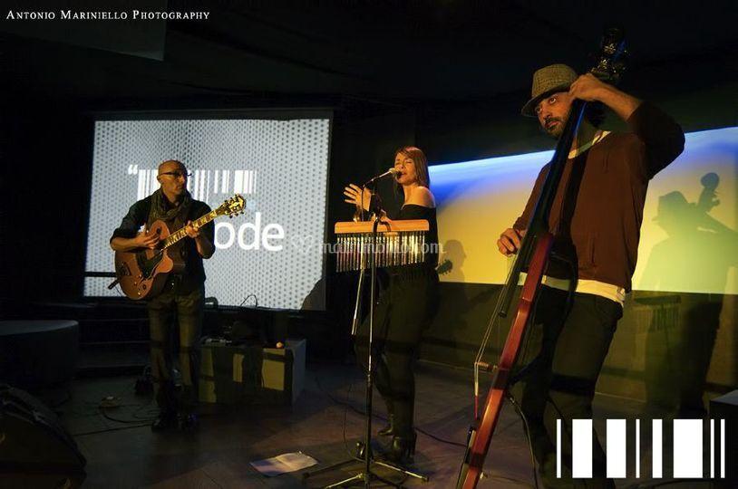 Live at BarCode