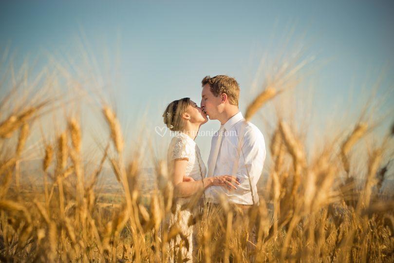 Wedding tuscany country