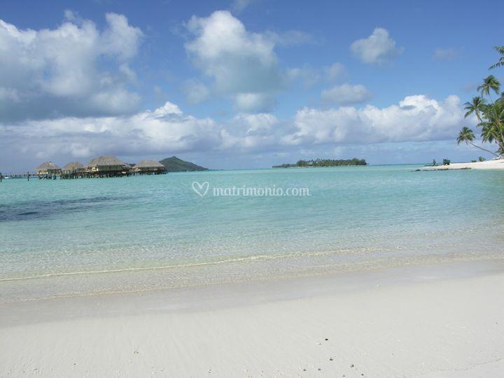 Polinesia - Bora Bora - Una spiaggia