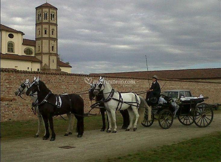 Carrozza d'epoca con quattro cavalli