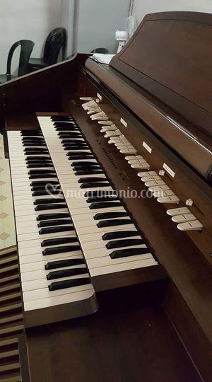 Il nostro organo