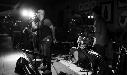 Fenek Band 1