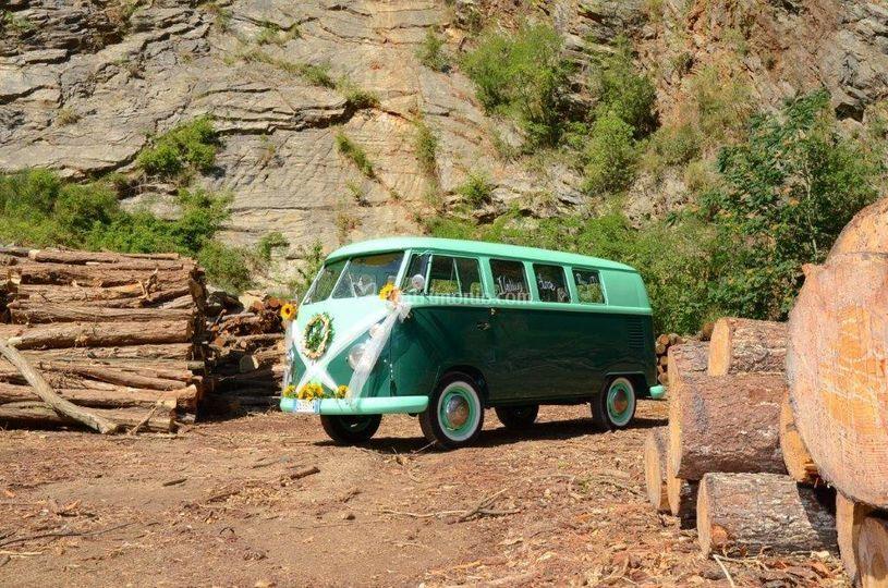 VW T1 profumo di legno