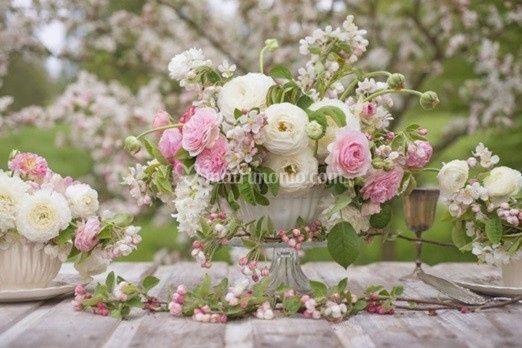 Evviva la Primavera