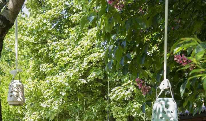 Il giardino delle fate!