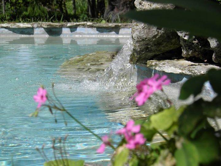 Savini Exclusive Garden