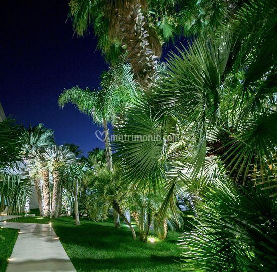 Arab Garden